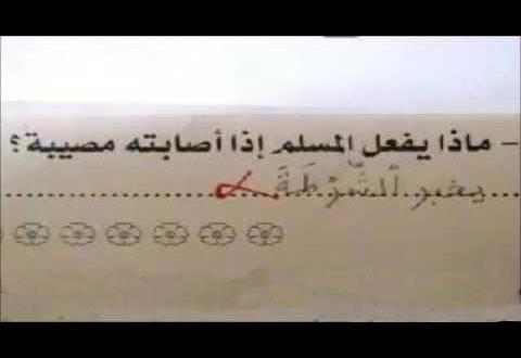School examinations